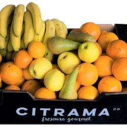Cesta de 5 frutas clásicas