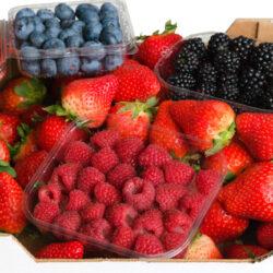 Cesta de frutos rojos