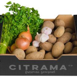 Cesta de patatas cebolla y ajo
